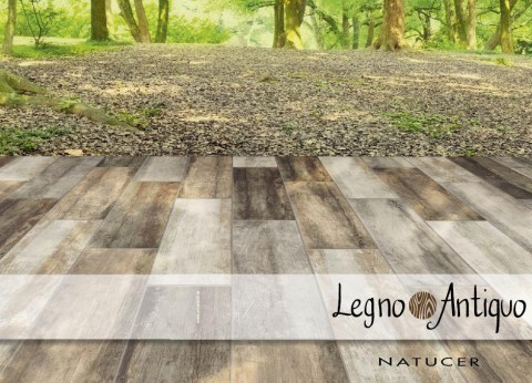legno-antiquo-cat