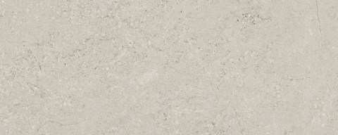 concrete_grey_20x50_g